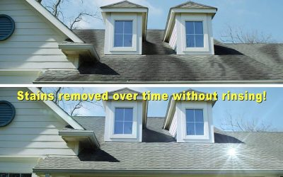 Clean That Dirty Roof